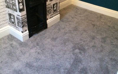 Domestic Carpet 10